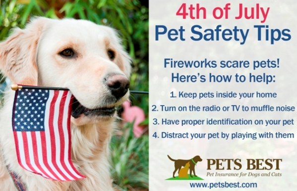 Don't forget about your pets this 4th of July